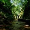 初夏の夢想滝川