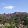 桜と山桜の矢祭山