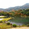 紅葉 和の庭園を彩る