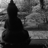 良い眺め_東慶寺