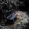 想い出のベンチ
