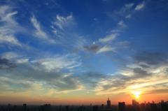 TOKYO BAY1