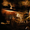 岡山後楽園幻想庭園4