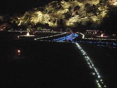 岡山後楽園幻想庭園2