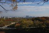 大阪城公園からの風景。