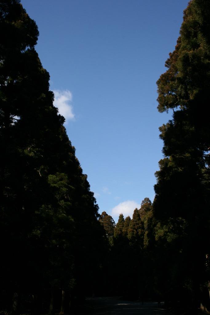 正月の空 その2