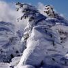 SNOW-WORLD 2