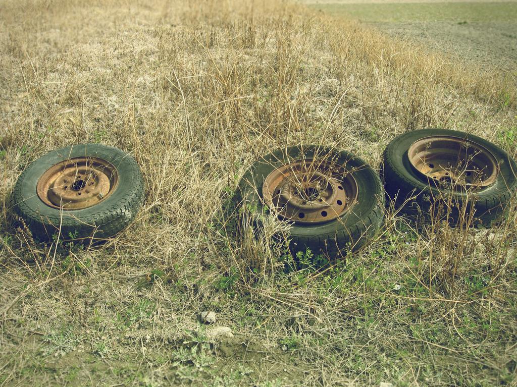 草原トラック