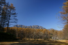 戸隠高原の自然公園