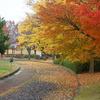 川中島古戦場の秋2008