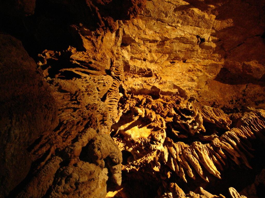 秋芳洞の天井
