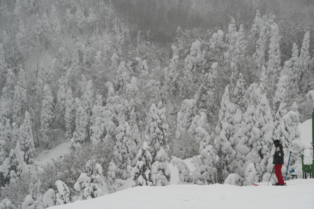 瑞穂スキー場