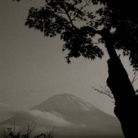 NIKON NIKON D40で撮影した風景(Dear Sumi-painting)の写真(画像)