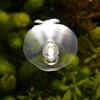 水面に浮かぶ電球