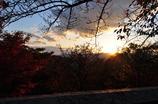 紅葉と夕焼け