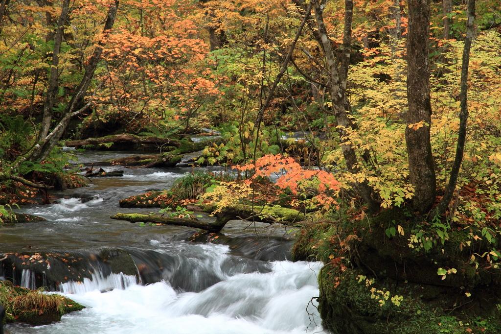 紅葉の奥入瀬渓流3