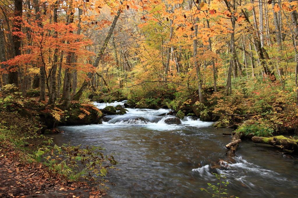 紅葉の奥入瀬渓流2