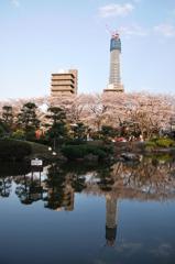 ダブルツリー&桜