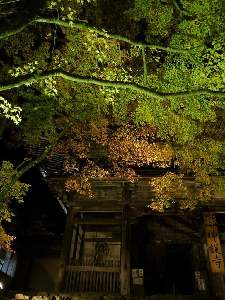 神護寺入口