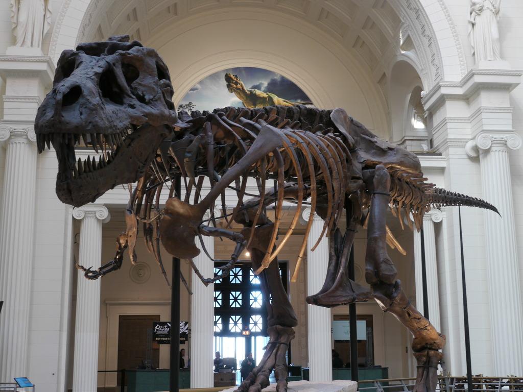 ティラノサウルス!