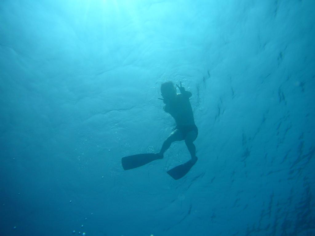 石垣島 2008