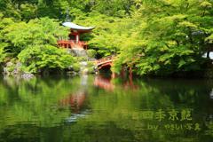 四季京艶 新緑の社寺を 二
