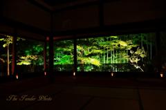 四季京艶 京の宵灯り