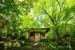 四季京艶 新緑の社寺を 八