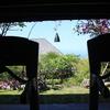 ブルガリ ジムのルームランナーからの眺め