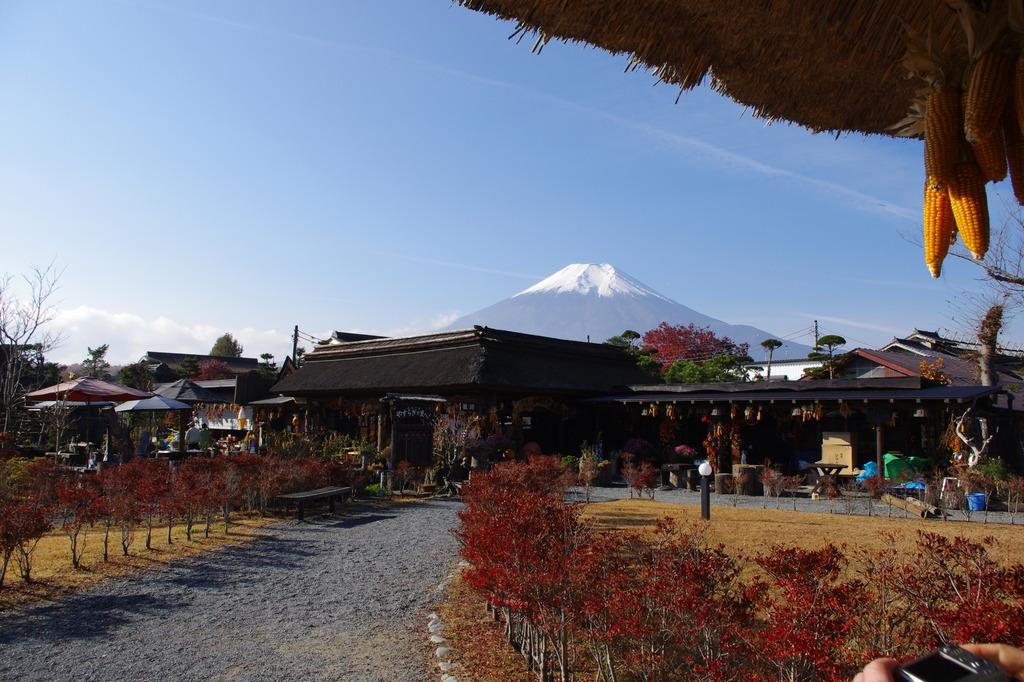 忍野八海から眺める富士山