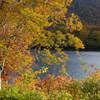 須川湖紅葉1