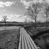 伊豆沼の木道