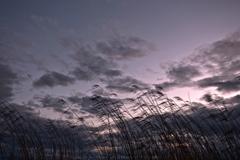 夕暮れの湖畔にて