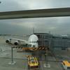 本日のA380 5