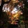 ちょっと京都まで15