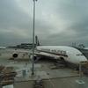 本日のA380 1