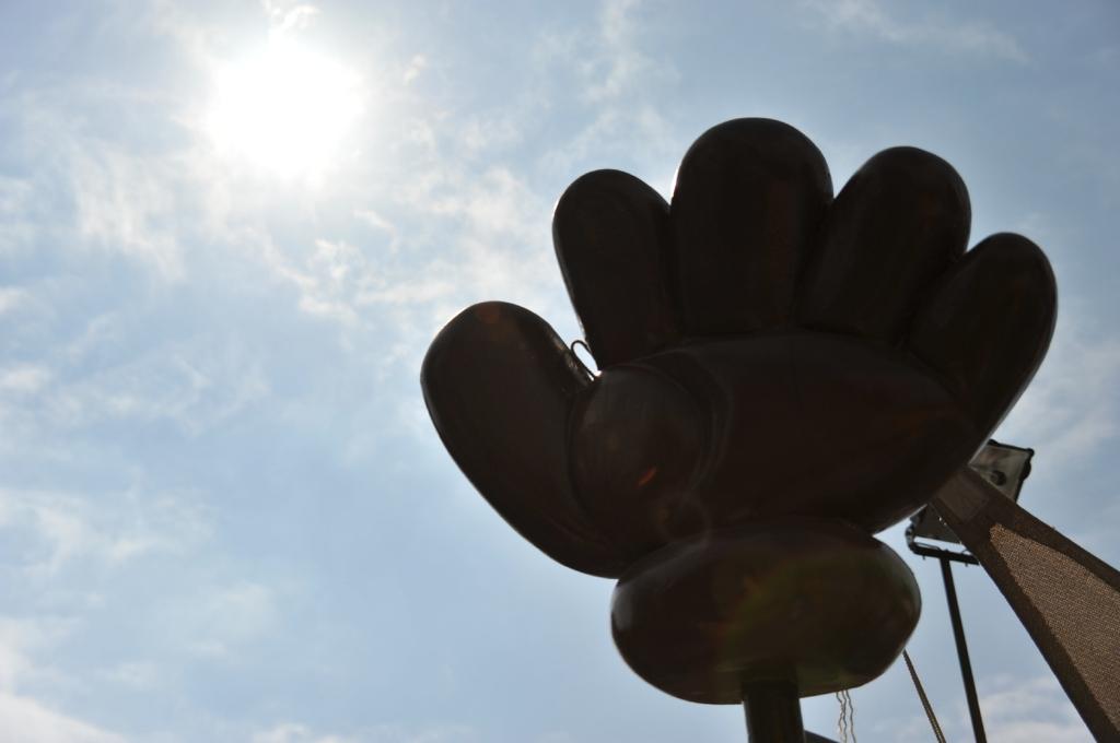 太陽をキャッチ