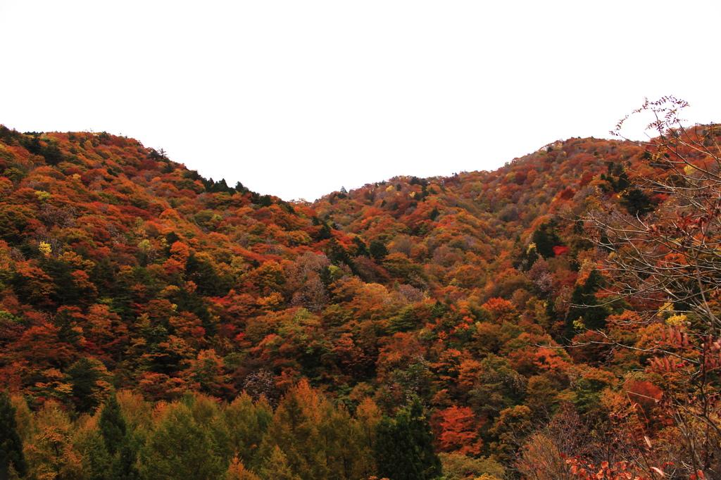 赤く燃える山-2
