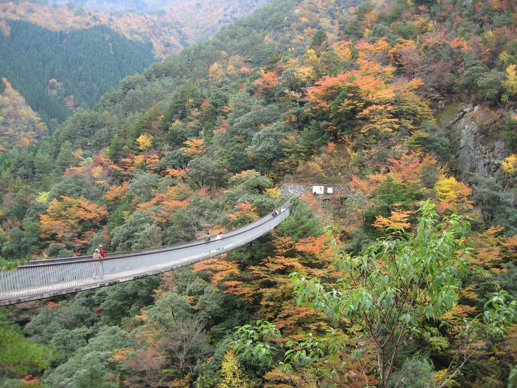 紅葉にかかる橋