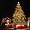 恵比寿ガーデンプレイス★クリスマスツリー