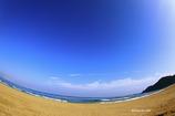 のどかな海