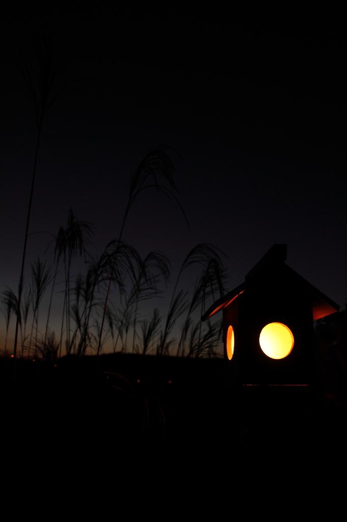 曽爾の灯籠