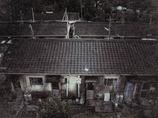 YAKUSHIMA STANDARD LIFE Ⅰ