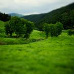 その他のカメラメーカー その他のカメラで撮影した風景(砥峰高原)の写真(画像)