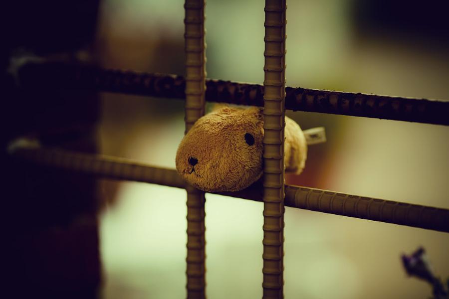 囚われの身のカピパラさん