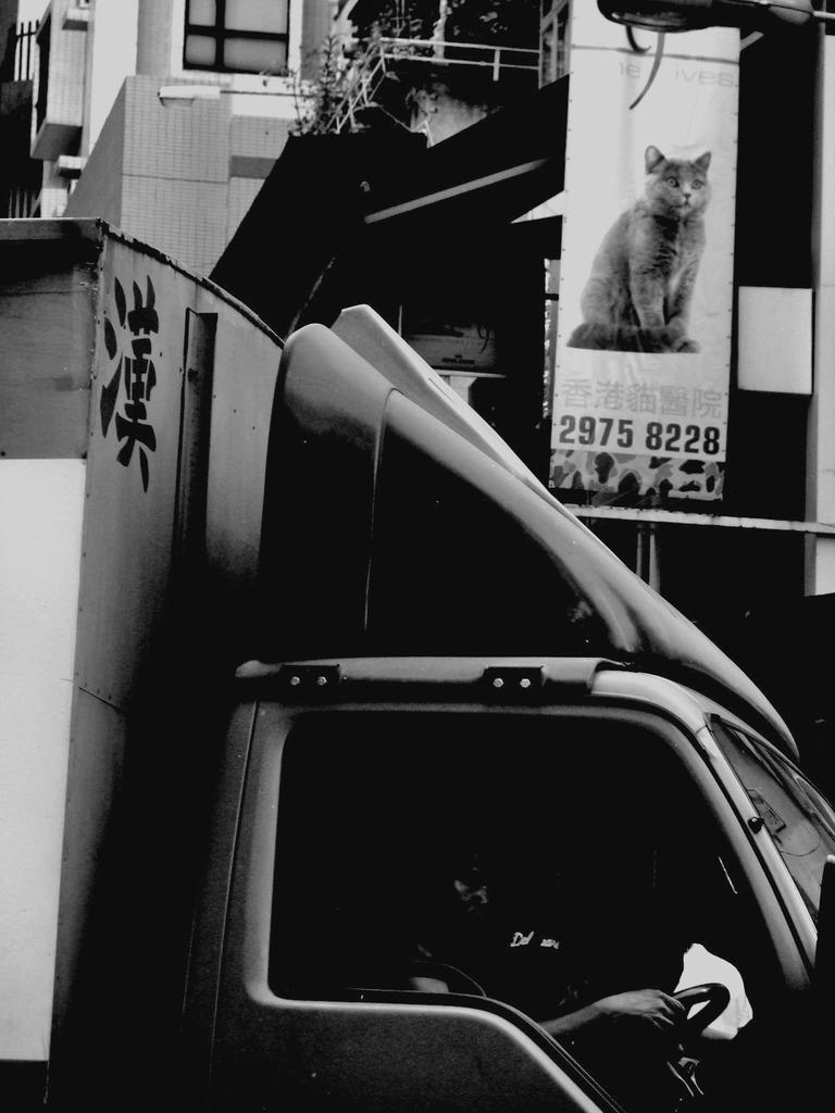 HongKongBlack #1
