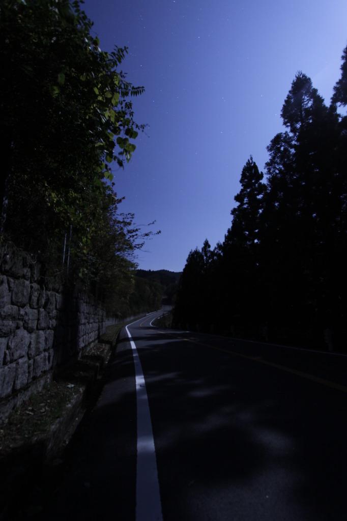 スカイライン11