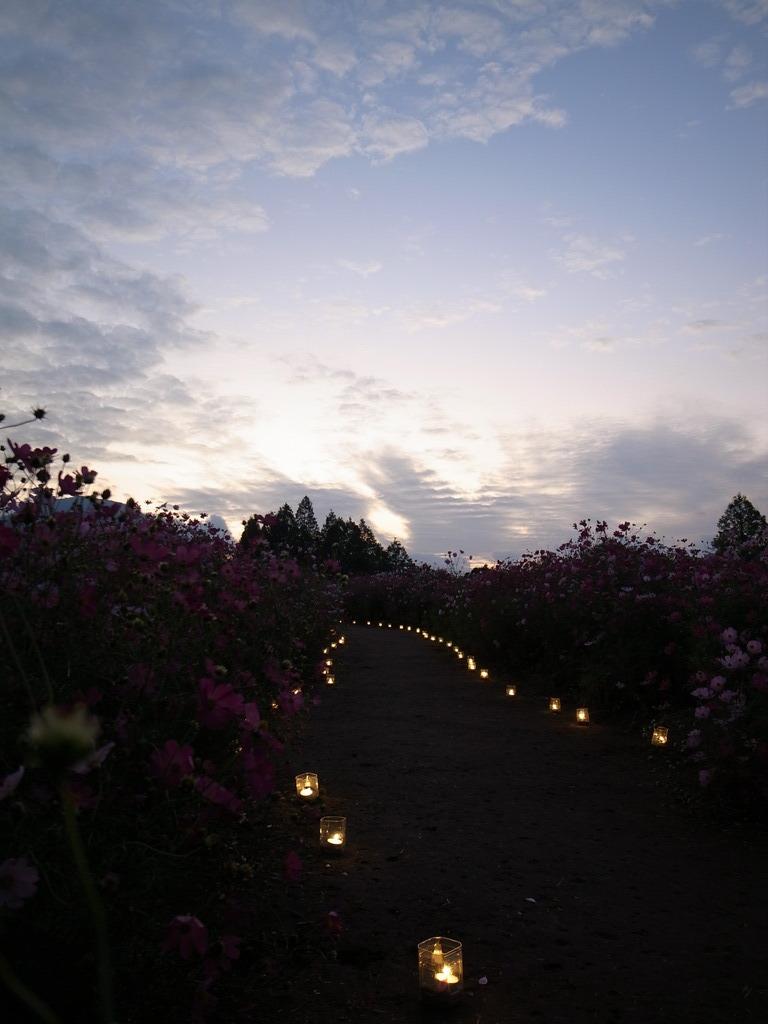 夕空への道