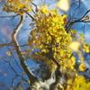 秋 うらら♪