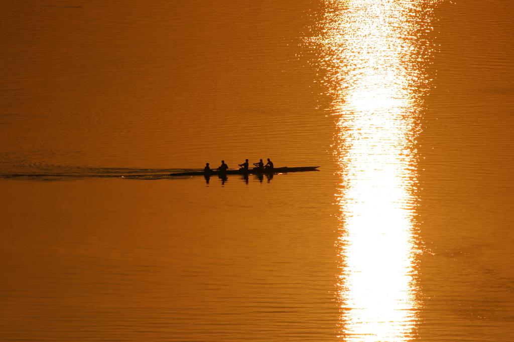 朝の大橋川にて。ボートの練習風景。